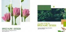 通用创意画册设计