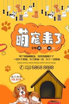 宠物店单页海报