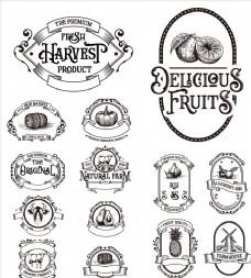 英文农产品瓶贴标签