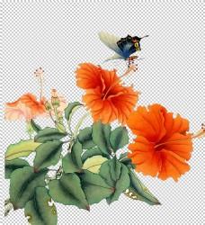 工笔蝴蝶花素材