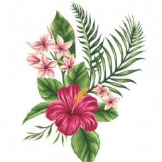 手绘花草 牡丹花园 元素素材