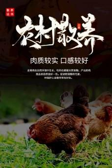 農家土雞 微信稿 原創 海報